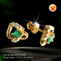 Hoa tai nạm đá Emerald
